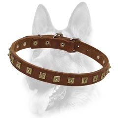 Superior leather dog collar