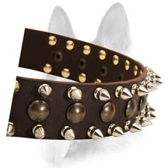 Wonderful leather dog collar with spikes