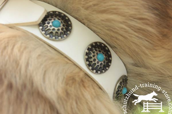 Tervuren collar with blue stones and conchos