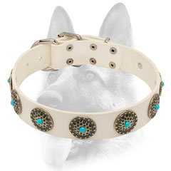 Elegant white leather dog collar for training of a working dog