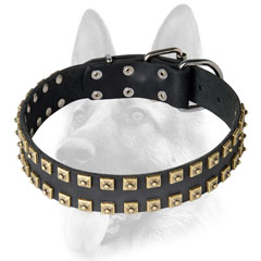 Handcrafted dog collar studded
