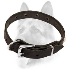 Dependable leather dog collar properly fitting for better comfort