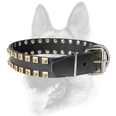 Training leather dog collar with corrosion resistant fittings