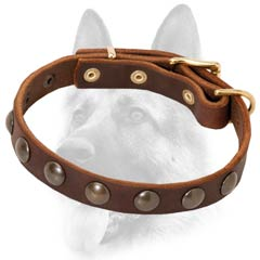 Fashion leather dog collar studded
