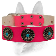 Blue stones and large conchos against pink leather