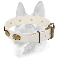 Leather dog collar white with adjustable gold-like buckle