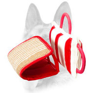 Young and Adult Dogs Bite Training Pillow with Jute Cover