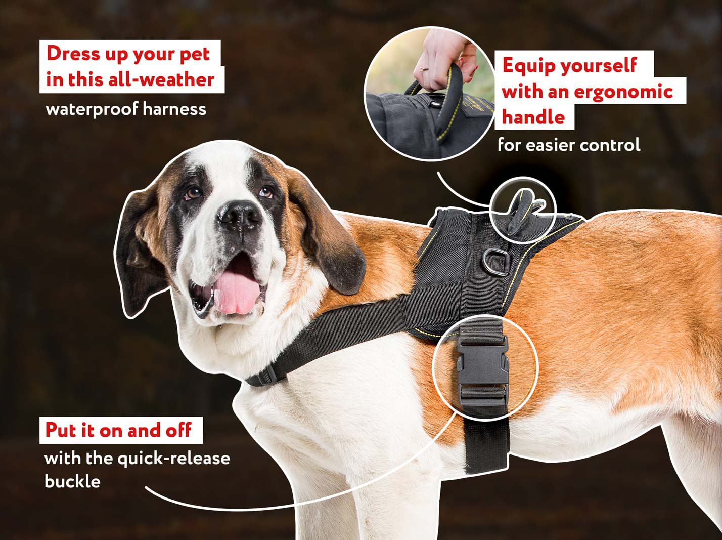 Multi-Purpose Lifetime Nylon Training Harness