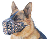 Stylish Hand-Painted Leather Dog Muzzle