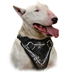 Most technologically advanced harness on the market