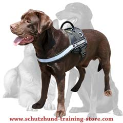 All-weather multi-purpose nylon harness