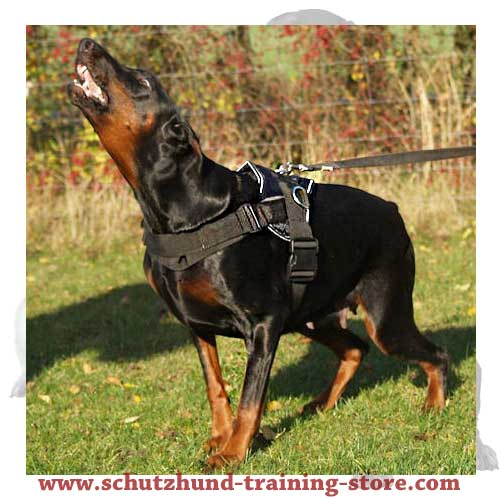 Padded Nylon Dog Harness with Adjustable Straps for Schutzhund