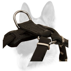 Extreme comfort leather harness