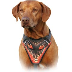 Comfortable felt padded leather dog harness