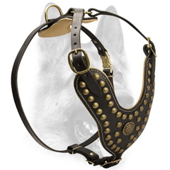 Walking no choke decorated leather harness