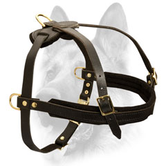 Luxury handicraft leather dog harness