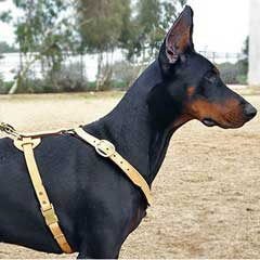 Safety tracking leather dog harness
