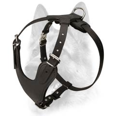 Well-built comfortable leather dog harness