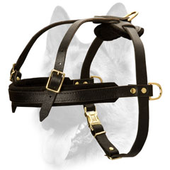 Wearproof fully leathern dog harness