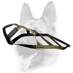 Most demandable nylon dog harness