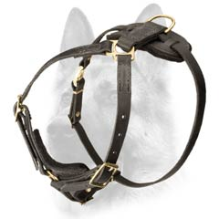 Well-built leather walking dog harness