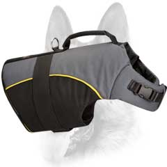 Easy-to-use safe professional nylon dog harness