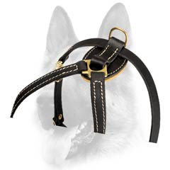 Well-fitting breathable leather dog harness