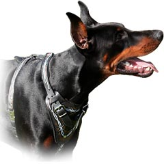 Comfortable free breathe leather harness