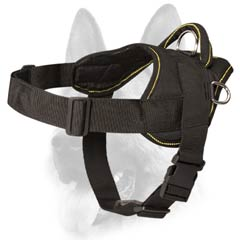 Multifunctional nylon dog harness