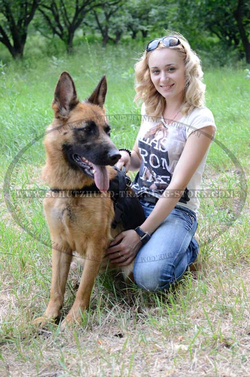 Dog Harness Nylon Lifetime Washable for German Shepherd