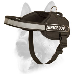 Designer security nylon dog harness