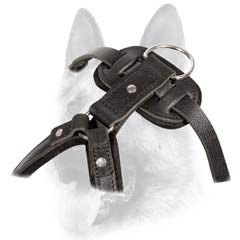 Prime quality safe dog harness