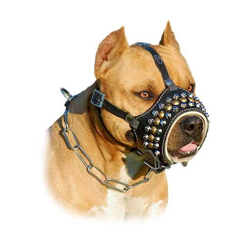 Genuine Leather Open-Nose Padded Dog Muzzle