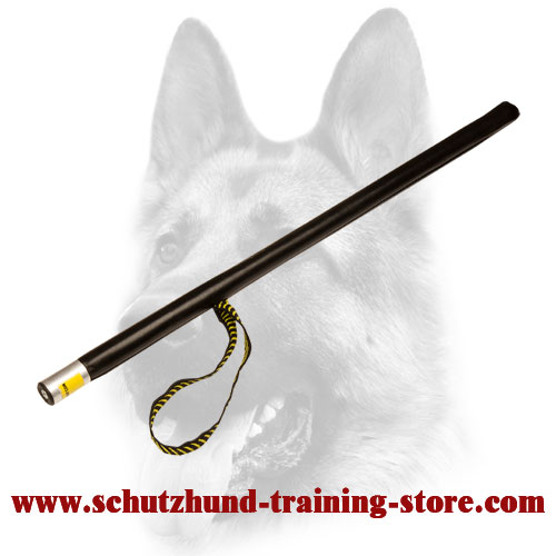 New Reliable Agitation Stick for Dog Training