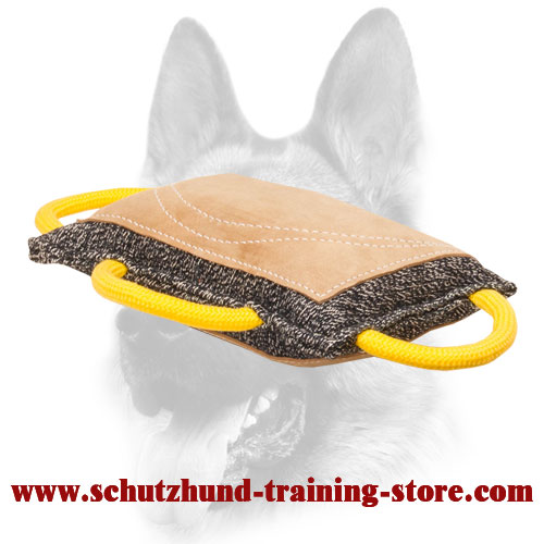 Leather Covered French Linen Bite Pad for Dog Training