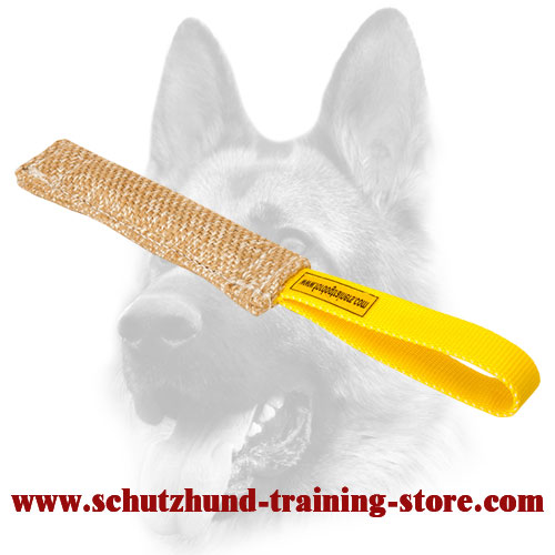 Safe Jute Bite Tug for Puppy Training - Click Image to Close