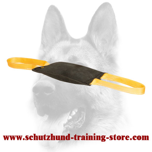 Excellent Leather Bite Tug for Young Dog Training