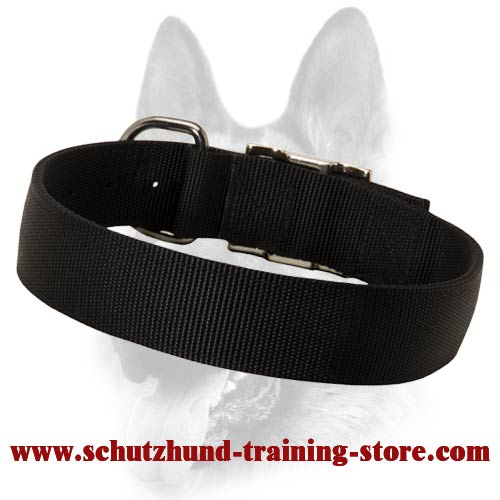 2 Ply Nylon Safe Dog Training Collar