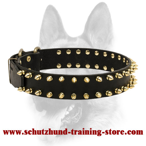 Bright Spiked Leather Dog Collar
