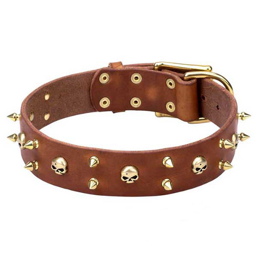 Natural Leather Dog Collar with Brass Spikes and Skulls