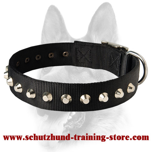 Gorgeous Wide Nylon Dog Collar With Nickle Pyramids