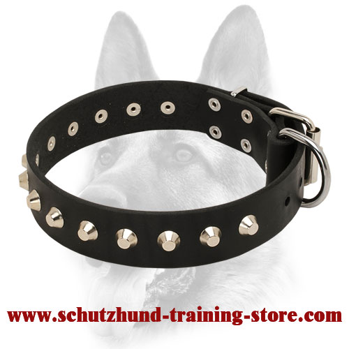 """Daily Elegance"" Leather Dog Collar with Steel Pyramids"