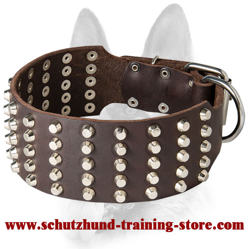 Extremely Wide Dog Studded Leather Collar