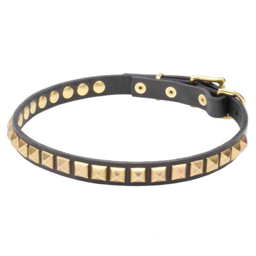 Narrow Leather Dog Collar with Brass Studs