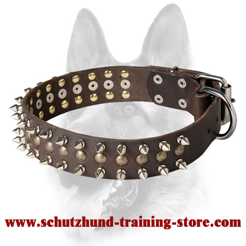 Splendid Leather Dog Collar Decorated with Spikes and Studs