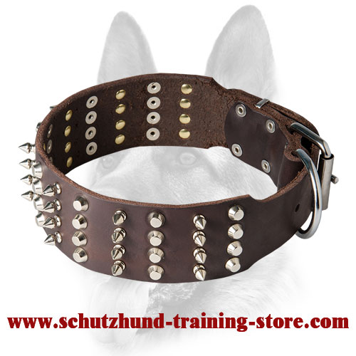 2 inch Leather Dog Collar with Studs and Spikes for Working Dogs