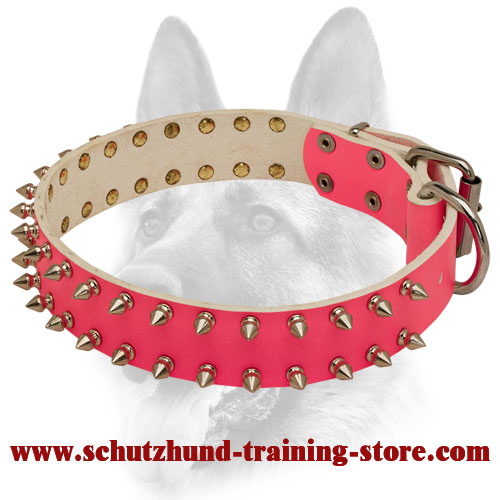 Fabulous Pink Dream Leather Spiked Collar