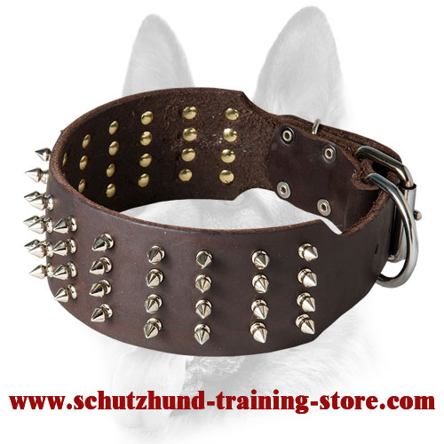 Extra Wide Leather Dog Collar with Silver-Like Spikes