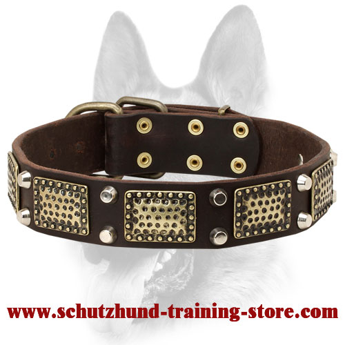 Stylish Dog Leather Collar with Brass-Covered Decorations