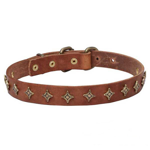 Narrow leather dog collar with old-like bronze decoration